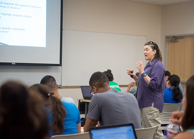 Associate Professor Dr. Heather Webb explains to her class how enzymes react to temperature during her Physiology of Exercise lecture.
