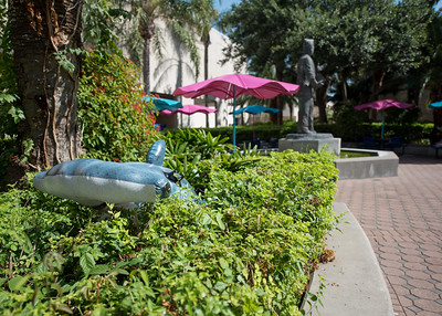 Hunter the Hammerhead searches for his cat friends at Hector P. Garcia Plaza.  Join us in celebration of Shark Week at Brewster Street Icehouse: http://bit.ly/2taqLoa