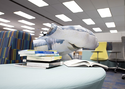 Hunter is ready to swim into the stress of summer classes as he studies for an exam for his English 2 course at the Mary and Jeff Bell Library.  Learn about TAMU-CC's participation in Shark Week:  http://bit.ly/2uIUKYq