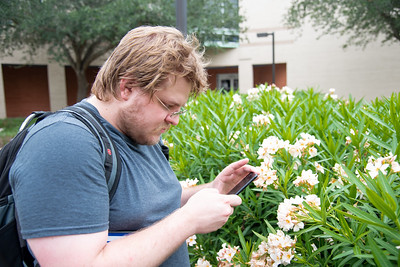 Ryan Leavelle stops to admire the beautiful flowers by taking a picture on his cell phone outside the University Services Center walkway