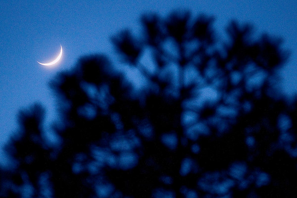 Spec Moon