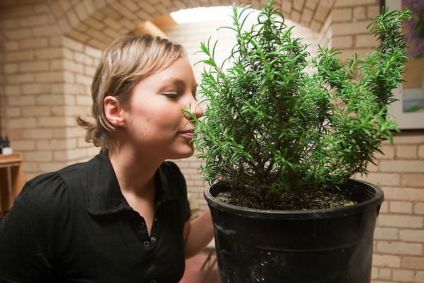 Record-Eagle/Douglas Tesner<br /> Ginny Holbrook smells a rosemary plant during a class on rosemary essential oil inside Creation Farm at the former state hospital in Traverse City.