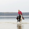"Record-Eagle/Keith King<br /> Holly Slikkers, of Old Mission Peninsula, rides her Belgian Quarter horse, Petunia, on Tuesday at the Bowers Harbor access site. ""She likes it,"" Slikkers said. ""They like to get out and see what's out there."""
