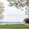 Record-Eagle/Jan-Michael Stump<br /> The Open Space on West Grand Traverse Bay in Traverse City. Traverse City Commissioners will take a closer look at use policies for the park.