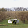 Record-Eagle/Keith King<br /> A fan is positioned in an orchard along County Road 633 in Bingham Township.