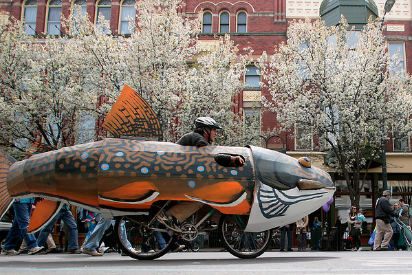 Record-Eagle/Jan-Michael Stump<br /> Andy Rockwood, of Traverse City, rides his brook trout bike as he and dozens of others marched through downtown Traverse City during Saturday's Earth Day Parade.