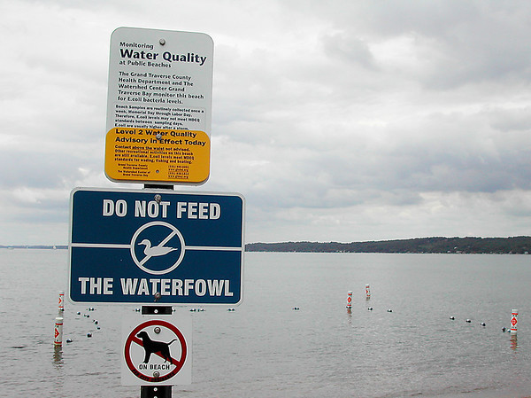 Record-Eagle/Sheri McWhirter<br /> The Grand Traverse County Health Department issued swim advisories for three Traverse City beaches this week, including West End Beach.
