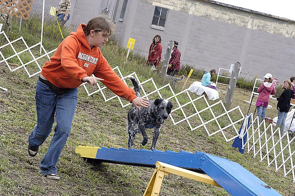 Record-Eagle/Lisa Perkins<br /> Sarah Mang takes her blue heeler Shadow through the paces on the agility course during Saturday's Bark at the Park.