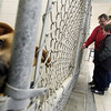 Record-Eagle/Jan-Michael Stump<br /> Tommy Blake, 6, and his mother, Jerilyn, of Grawn, look at dogs up for adoption at the Cherryland Humane Society on Tuesday afternoon.