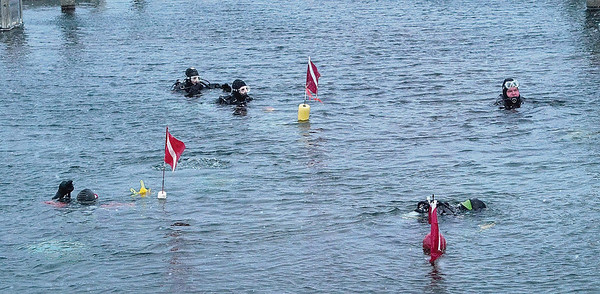 Record-Eagle/Douglas Tesner<br /> Divers from Scuba North swim in cold Grand Traverse Bay at the Clinch Park Marina. Scuba North has been holding the New Year's Day dive for more than 25 years. This year, eight divers took part.