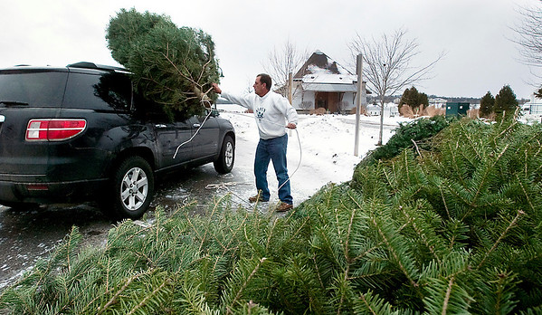 Record-Eagle/Douglas Tesner<br /> Bill Baumgartner removes his Christmas tree from the top of his car Saturday at the Christmas tree dropoff in Hull Park. The Traverse City Parks and Recreation Division offers the free service in the boat launch parking lot at Hull Park on Hannah Street behind the library between 8:00 a.m. and 6:00 p.m. through Jan. 21.