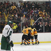 Record-Eagle/Keith King<br /> Traverse City Central players and fans celebrate a second-period goal against Traverse City West on Wednesday.