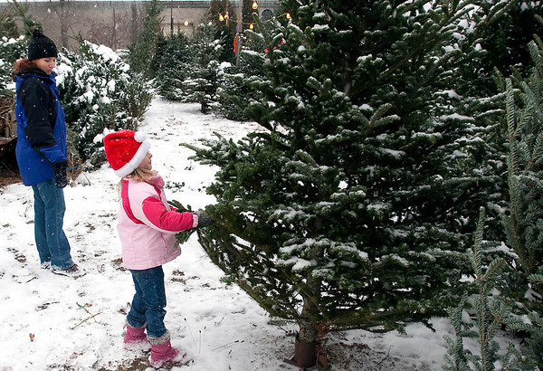 Record-Eagle/Douglas Tesner<br /> Kelly Carlton and her daughter Kiley, 4, shop for a Christmas tree at Roy's Tree Lot on Hall Street in Traverse City. The operator said the trees are fresh and in some cases brought in daily.