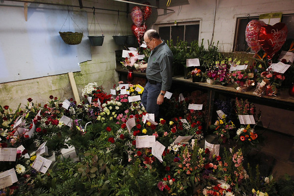 Record-Eagle/Keith King<br /> Designer Mike O'Connor places a flower arrangement among other arrangements in a storage area Monday, the day before Valentine's Day, at Teboe Florist & Greenhouse in Traverse City .