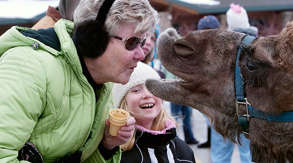 Record-Eagle/Douglas Tesner<br /> Diane Vannatter, of Williamsburg, gets a funny reaction after kissing a camel as her granddaughter Abby Vannatter, 8, bursts into laughter. They attended the Cherry Capital Winter Wonderfest Saturday.