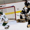 Record-Eagle/Douglas Tesner<br /> Traverse City West's Jake Gillis (10) celebrates his goal 1:39 into Wednesday's game with Cadillac.