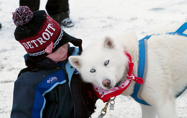 Record-Eagle/Douglas Tesner<br /> Michael Anderson, 6, of South Lyon, pets a Siberian Husky named Liberty during Saturday's Cherry Capital Winter Wonderfest at the Grand Traverse Resort and Spa in Acme.