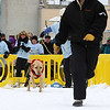 Record-Eagle/Keith King<br /> Alyssa Reardon, of Elk Rapids, runs ahead to motivate Sam, her English lab, at the Monster Dog Pull competition.