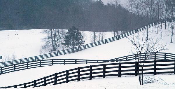 Record-Eagle/Douglas Tesner<br /> A fence runs across the landscape near Lake Shore Drive in Leelanau County.