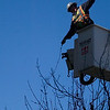 Record-Eagle/Jan-Michael Stump<br /> Jim Farrington, a journeyman linemen with Traverse City Light & Power, takes down lights from the trees on East Front Street on Tuesday afternoon. The seasonal lights will be strung back up in the fall.