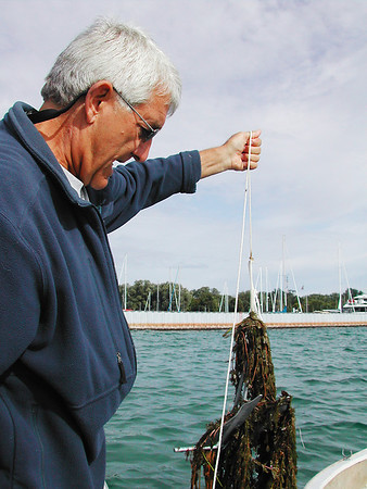 Record-Eagle file photo/Sheri McWhirter<br /> John Nelson, Grand Traverse baykeeper, pulls an anchor weighted with water milfoil from the bay in August 2009.