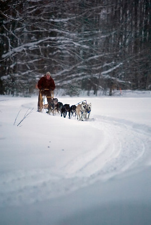 Record-Eagle/Jan-Michael Stump<br /> <br /> Kerry Mosko (cq) takes her dogs out for a training run on Wednesday afternoon for this weekend's Kalkaska Winterfest.