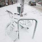 Record-Eagle/Keith King