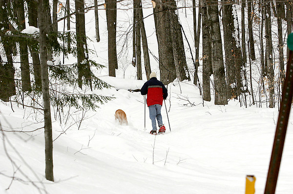 Record-Eagle file photo/Douglas Tesner<br /> A man snowshoes with his dog near Hickory Hills in Traverse City.