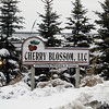 Record-Eagle file photo/Jan-Michael Stump<br /> The former Cherry Blossom LLC facility in Whitewater Township.