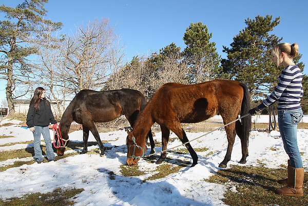Record-Eagle/Keith King<br /> Volunteers Kattie Beaton, left, 18, of Suttons Bay, and Ruth Bovard, of Kingsley, stand with grazing horses at a Kingsley farm Tuesday after they were removed from their owner near Fife Lake because of neglect.
