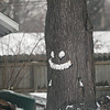 Record-Eagle/Keith King<br /> A snowy smiley face is formed on a tree along Pine Street in Traverse City.