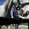 Record-Eagle/Keith King<br /> Sarah Sedky, 18, of Bloomfield Hills, washes Henry, her Irish Sport Horse, in preparation for the Horse Shows by the Bay Equestrian Festival at the Flintfields Horse Park in Williamsburg.