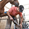 Record-Eagle/Douglas Tesner<br /> Robert Davis, a farrier apprentice from North Carolina, shoes a horse at Horse Shows By The Bay Monday.  Davis travels across the country shoeing horses.