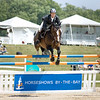 Record-Eagle/Keith King<br /> Tea Party, ridden by Richard Moloney, takes a jump in the $10,000 Open Jumper Welcome Prix during the 2010 Horse Shows by the Bay at the Flintfields Horse Park in Williamsburg.