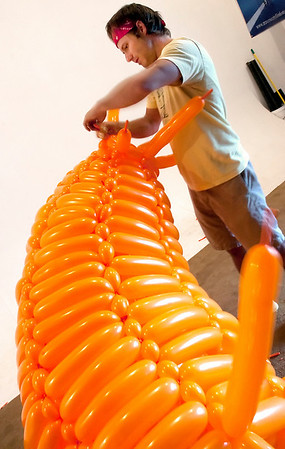 Record-Eagle/Douglas Tesner<br /> Jason Hackenwerth uses balloons to create art that will be featured during the opening celebration of the Traverse City Film Festival. Hackenwerth hopes to have three sculptures finished by Tuesday's street party.