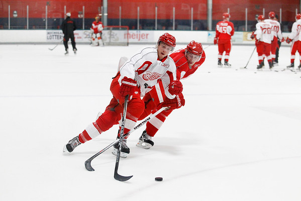 Record-Eagle/Jan-Michael Stump<br /> Gustav Nyquist (14) and Brendan Smith (2) fight for the puck during a drill at the Detroit Red Wings Skill Development Camp Thursday at Centre ICE Arena.