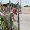 Record-Eagle/Keith King<br /> Robert Schoenfeldt, of Traverse City, places flowers at a memorial for Carly Lewis on Wednesday on Beitner Street near the Traverse City public works complex off Woodmere Avenue, where Carly's body was found.