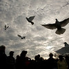 Record-Eagle/Jan-Michael Stump<br /> The Grand Traverse Area chapter of Compassionate Friends held its second annual dove release for parents and family members in remembrance of children lost Monday evening on the shore of West Grand Traverse Bay in Traverse City.