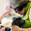 Record-Eagle/Jan-Michael Stump<br /> Ann Glenn, of Clarkston, grooms her hairless Chinese crested dog Night Sky at the Grand Traverse Civic Center for The Grand Traverse Kennel Club's annual All-Breed Dog Show, Obedience Trial and Rally Trial.
