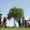 Record-Eagle/ Keith King<br /> Festival goers walk through Haserot Park in Northport as they look at an assortment of arts and crafts at the Northport Lighthouse and Maritime Festival.