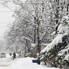 Record-Eagle/Keith King<br /> Heavy snow blankets a neighborhood last Saturday in Traverse City.