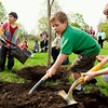 Record-Eagle/Jan-Michael Stump<br /> From left, Glenn Loomis Montessori first-graders Sydney Hall, Sol Medwed-Cohen, Westin Edick and third-grader Kyle Bishop plant an American Liberty Elm in celebration of Arbor Day at the Grand Traverse Area Veterans Memorial Park at the corner of Twelfth and Elmwood streets. Members of VFW Post 2780 in Traverse City and The Friendly Garden Club of Traverse City were also on hand for the planting.