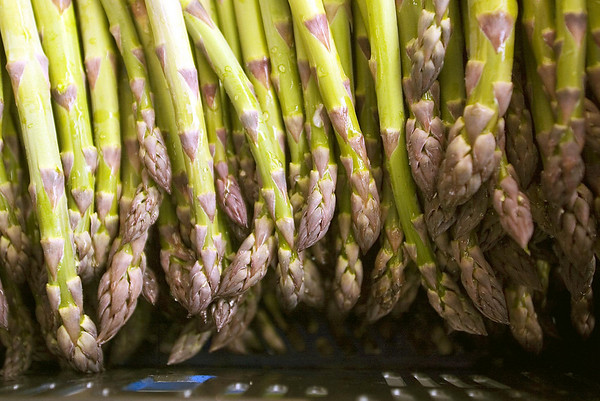 Record-Eagle file photo<br /> It's almost asparagus season on local farms.