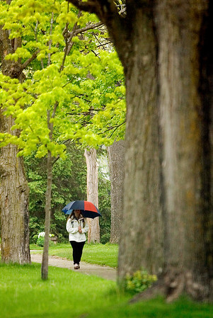 Record-Eagle/Jan-Michael Stump<br /> Jaclynn Laisure walks down Nineth Street on her way to the store, then work, on a rainy Tuesday morning. Rain is expected on Wednesday morning, but clearing in the afternoon with a high in the mid-50s.