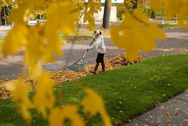"Record-Eagle/Jan-Michael Stump<br /> Michelle Turner rakes leaves in front of her Sixth Street home. ""It would be nice if they were dry, but we live in northern Michigan; we'll take what we can get,"" she said."