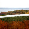 Record-Eagle/Jan-Michael Stump<br /> High tunnels over rows of grapevines, like these on Old Mission Peninsula, can help extend the growing season and produce different results than the same variety of grapes grown outside the coverings.