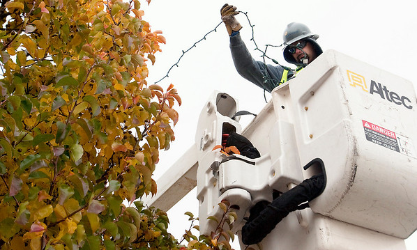 Record-Eagle/Douglas Tesner Brian Zionskowski, a Traverse City Light & Power employee, hangs lights in the trees along State Street in downtown Traverse City in preparation for the upcoming holiday season.
