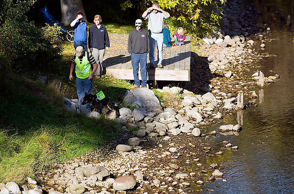 Record-Eagle/Jan-Michael Stump<br /> Scott Reynolds checks a storm sewer along the Boardman River in Hannah Park with Sable, wrapping up a week of testing in the area. Members of the Watershed Center Grand Traverse Bay and Traverse City employees take part in the search.