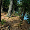Record-Eagle/Jan-Michael Stump<br /> The DNR has permanently closed the Forks State Forest Campground, an eight-site rustic campground on the Boardman River in Grand Traverse County.