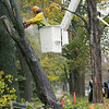Record-Eagle/Keith King<br /> John Fall and other TC Parks and Recreation Department employees remove a maple tree along Eighth Street that was damaged by the winds. A worker said that an oak tree kept the maple tree from falling onto a nearby home.
